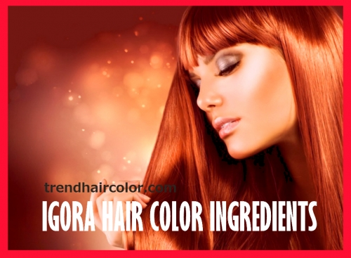 schwarzkopf hair dye instructions