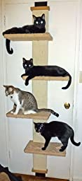 smartcat cat climber instructions